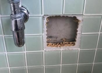 Toilet Repair - Toilet Installation - Bromley Plumbers